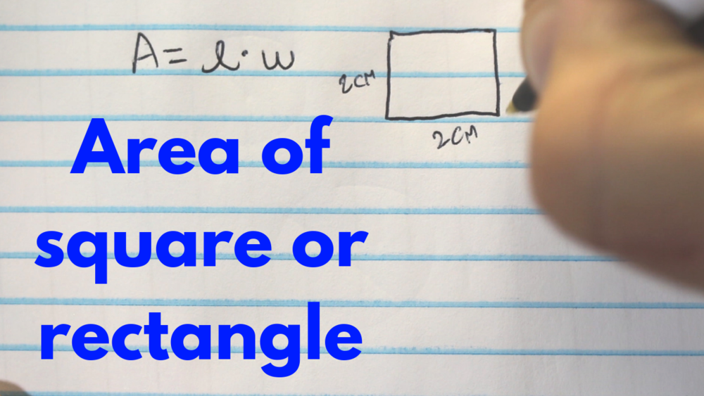 How to Find the Area of a Square or Rectangle