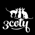3coty_fb_profile_logo_150b.jpg