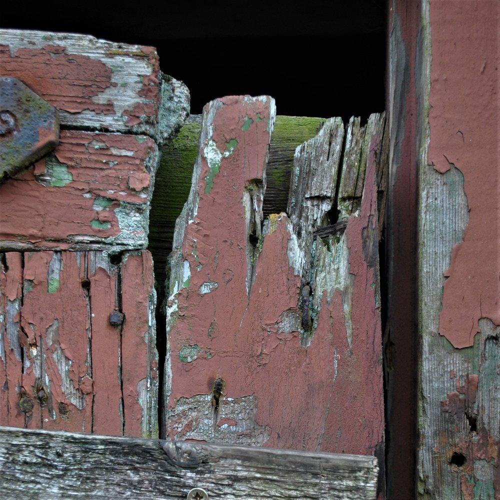 Barn Door - photo: Dave Harper
