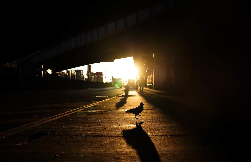 180616_Midtown_NYC_007.jpg