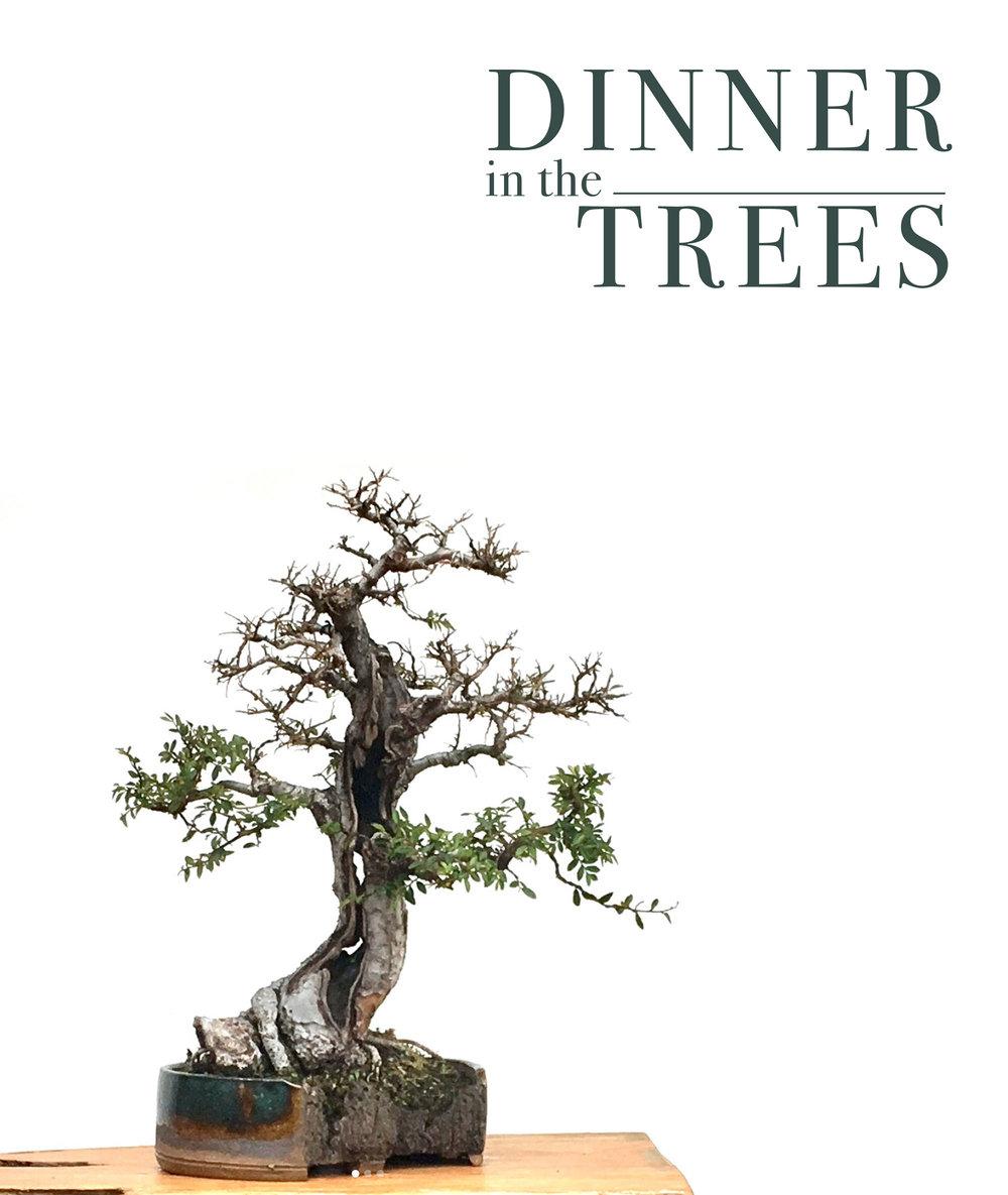 trees-promo.jpg