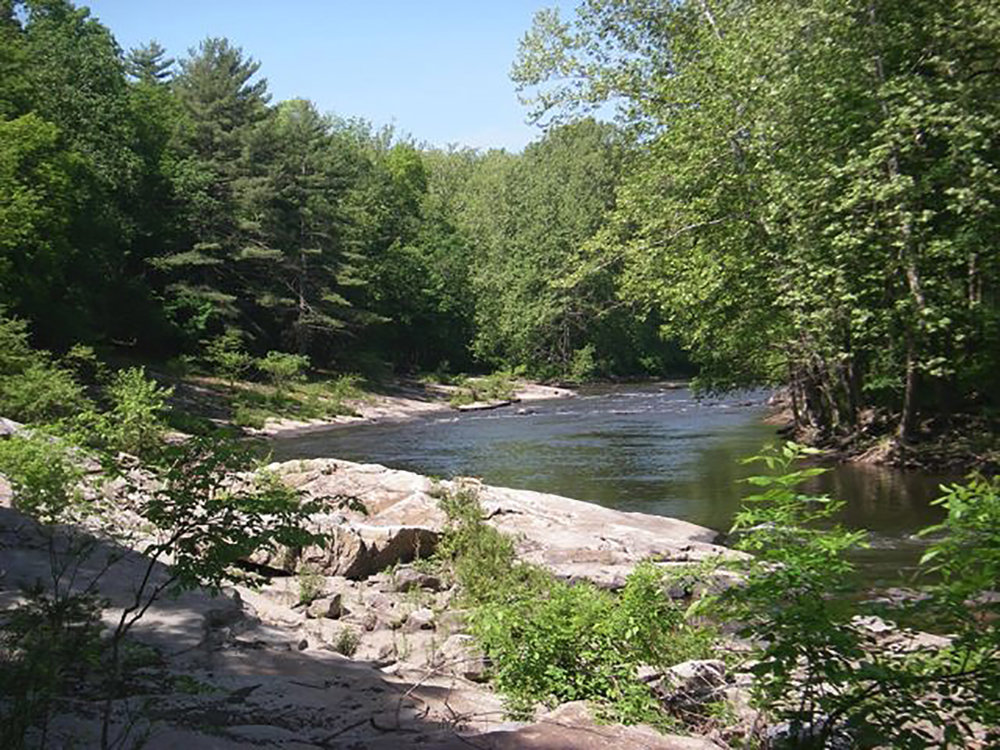 You have your own private stretch of the river for swimming and tubing.