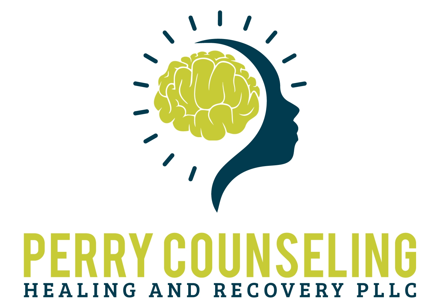 Perry Counseling, Healing and Recovery PLLC