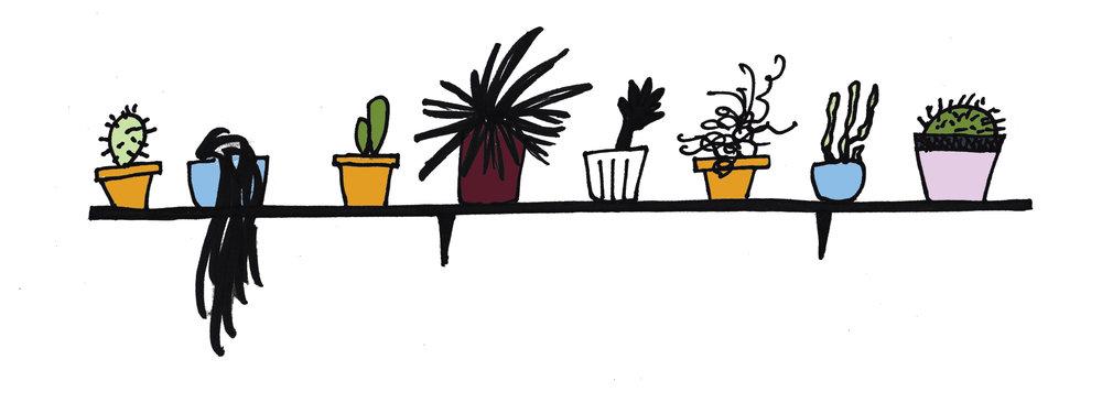 plant shelf.jpg