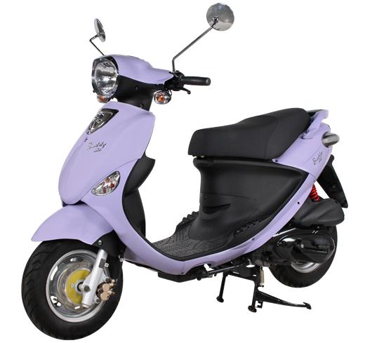 buddy125-lavender.jpg