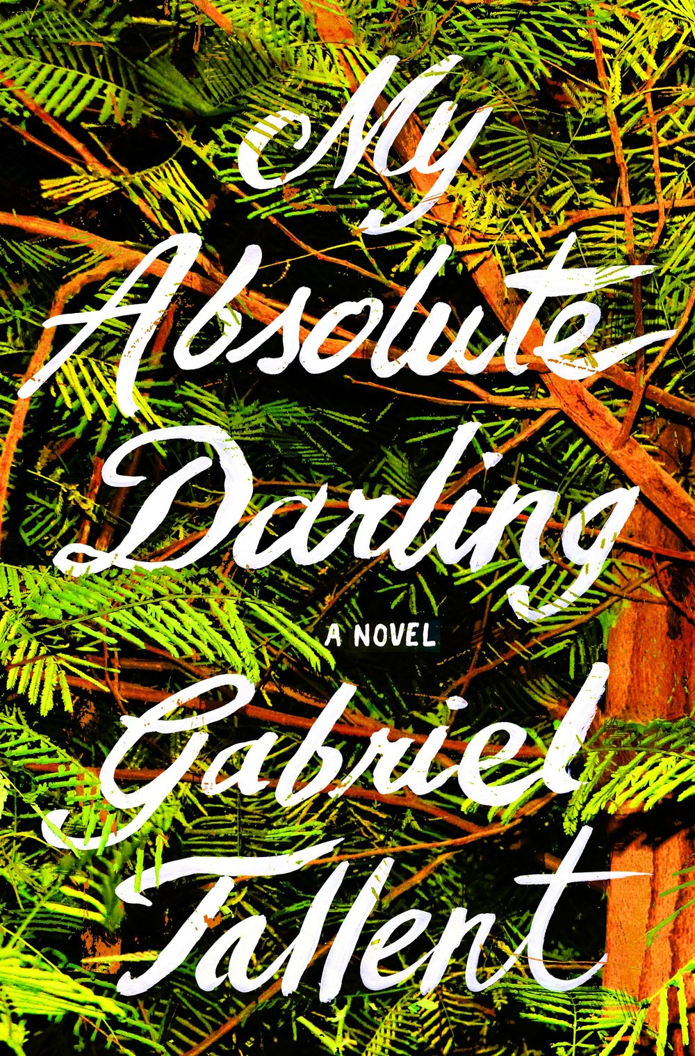 My Absolute Darling - A brilliant and immersive, all-consuming read about one fourteen-year-old girl's heart-stopping fight for her own soul.Amazon • B&N • BaM • IndieBound • iBooks