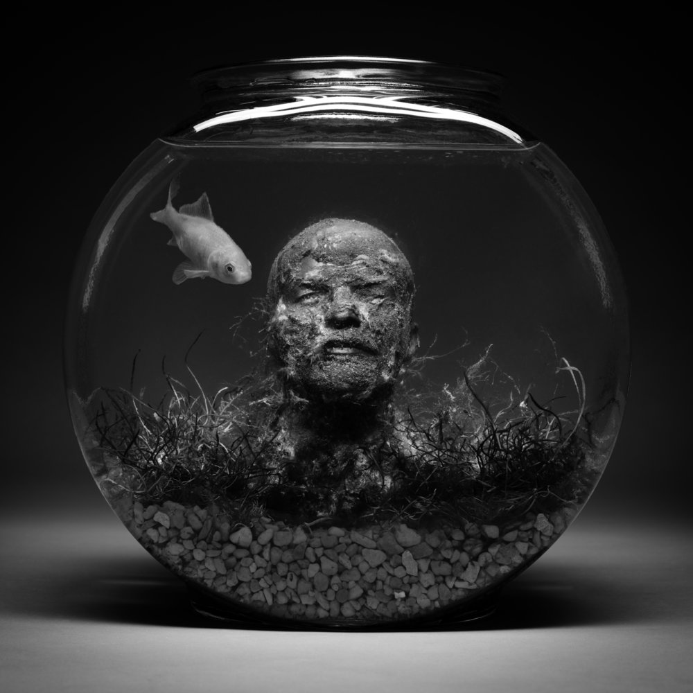 Still Life With Lenin and One Goldfish