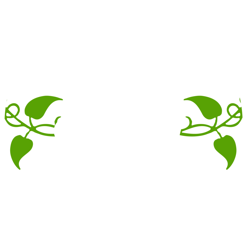 GV_circle_white.png