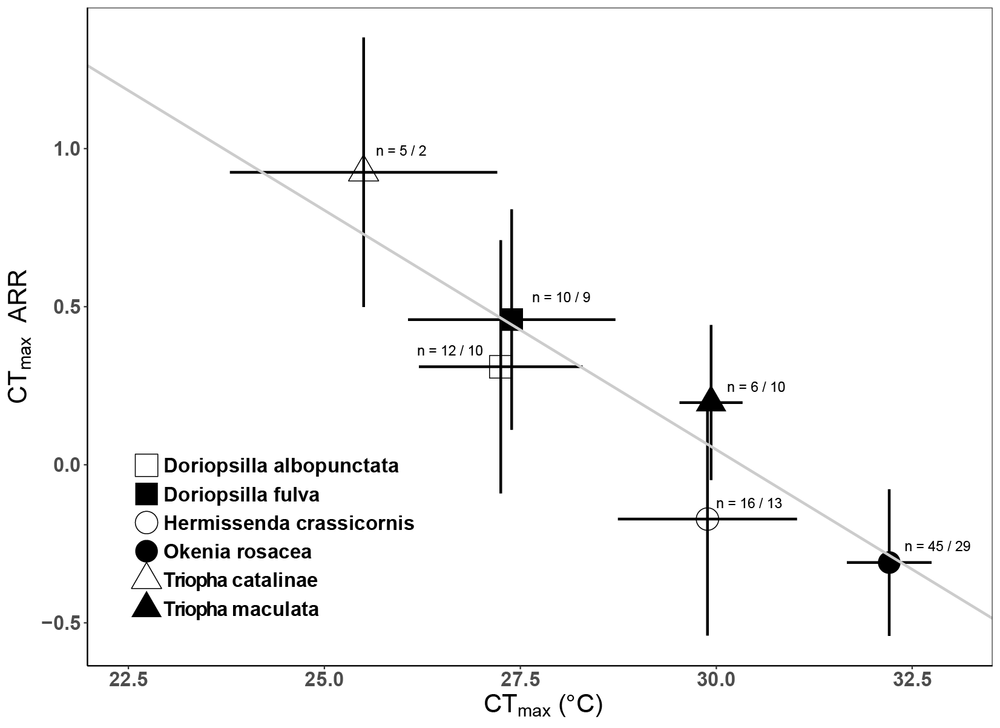 Heat tolerance plasticity and heat tolerance are negatively correlated in intertidal gastropod molluscs.   Mean heat tolerance plasticities (CTmax ARR) are plotted against mean heat tolerance limits (CTmax, 13°C acclimation group) for each species for which data was available. The resulting, phylogenetically constrained, negative relationship suggests that nudibranchs with the highest inherent tolerances of warming are also the least able to plastically adjust those limits in the face of future temperature increases.