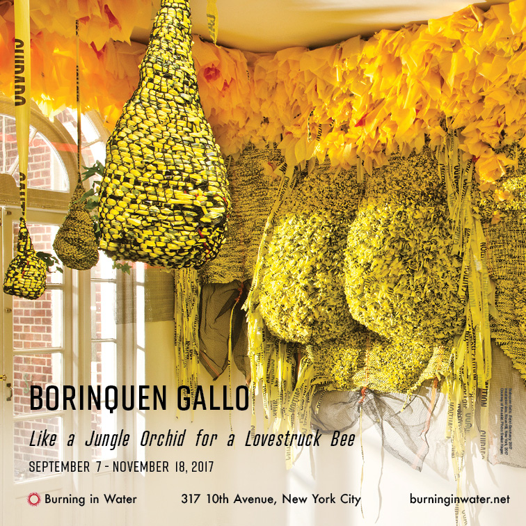 Borinquen Gallo faculty at the New York School of the arts