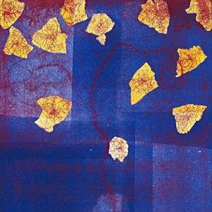 Taka Maruno, image1.jpeg