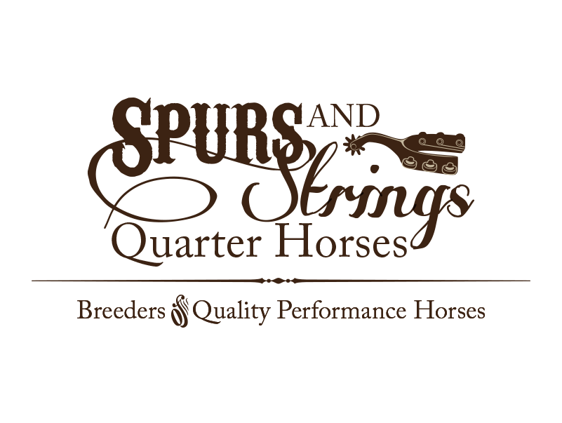 Spurs and Strings Quarter Horses   SSQH is a breeder of quarter horses in the Texas hill country with a focus on the reining industry.