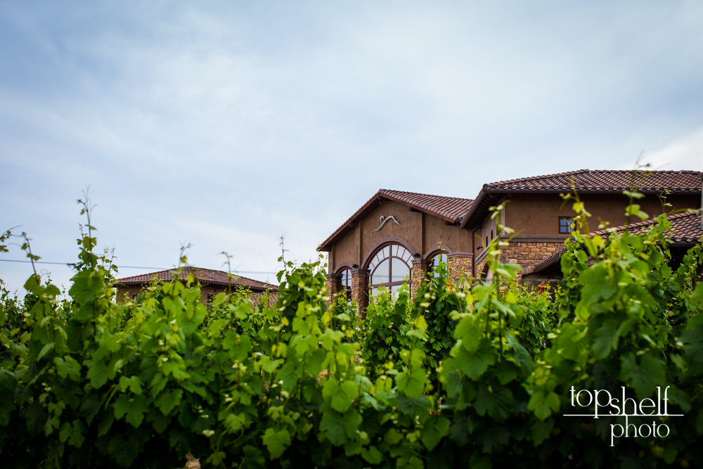 wedding monte de oro winery temecula top shelf photo-17.jpg