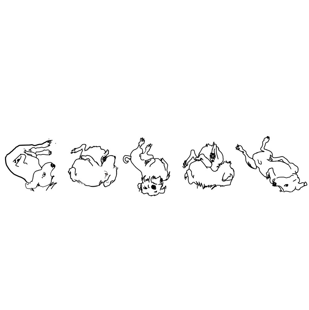 Illustration for a children's book, 2017