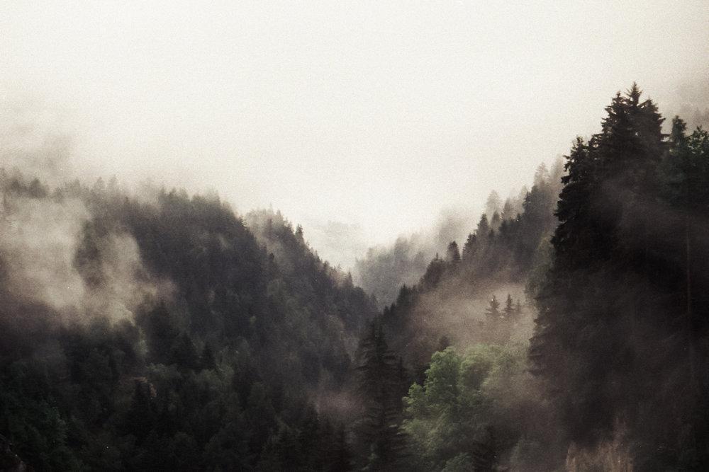 TRAVEL_SWITZERLAND_STEPH-80.JPG