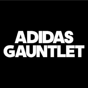 http://adidasgauntlet.com/