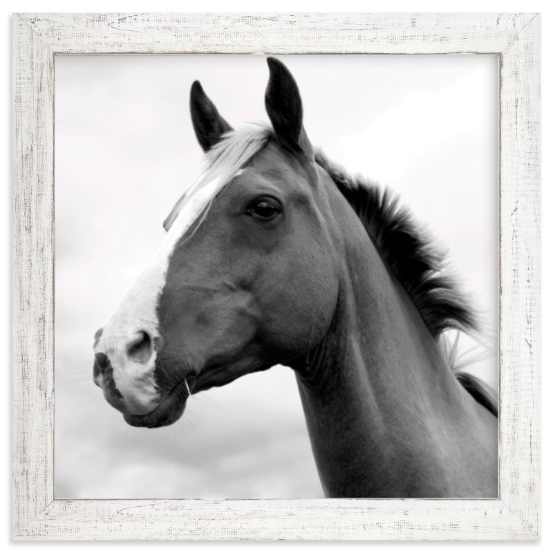 modern farmhouse rustic framed black and white horse art