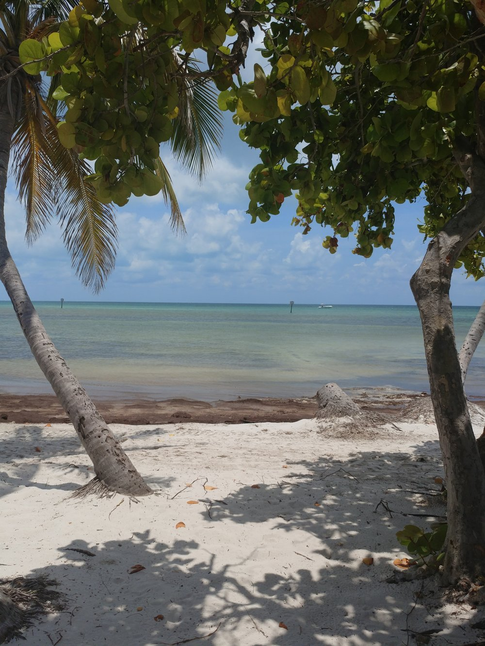Smathers Beach, Key West, Florida by Megan Winkler The Brainy Babe