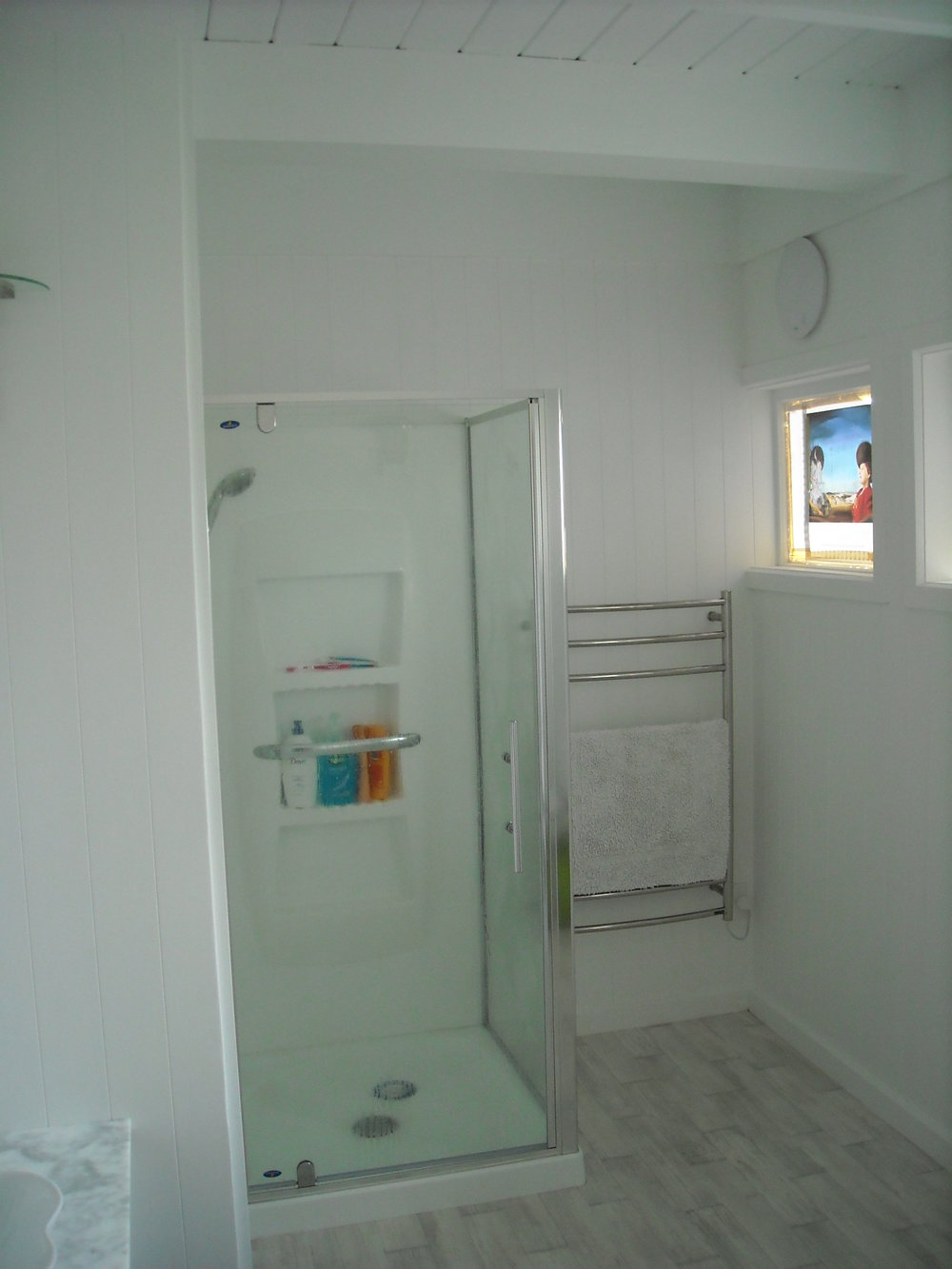 Shower pict window 007.JPG