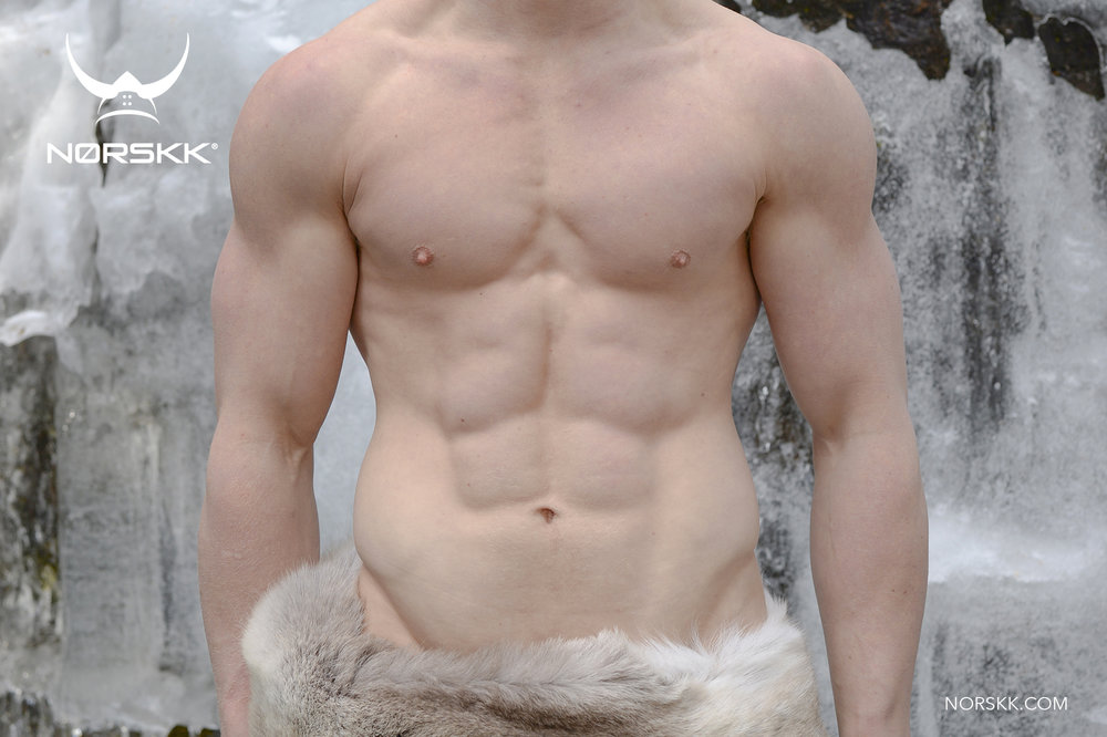 norse_abs.jpg