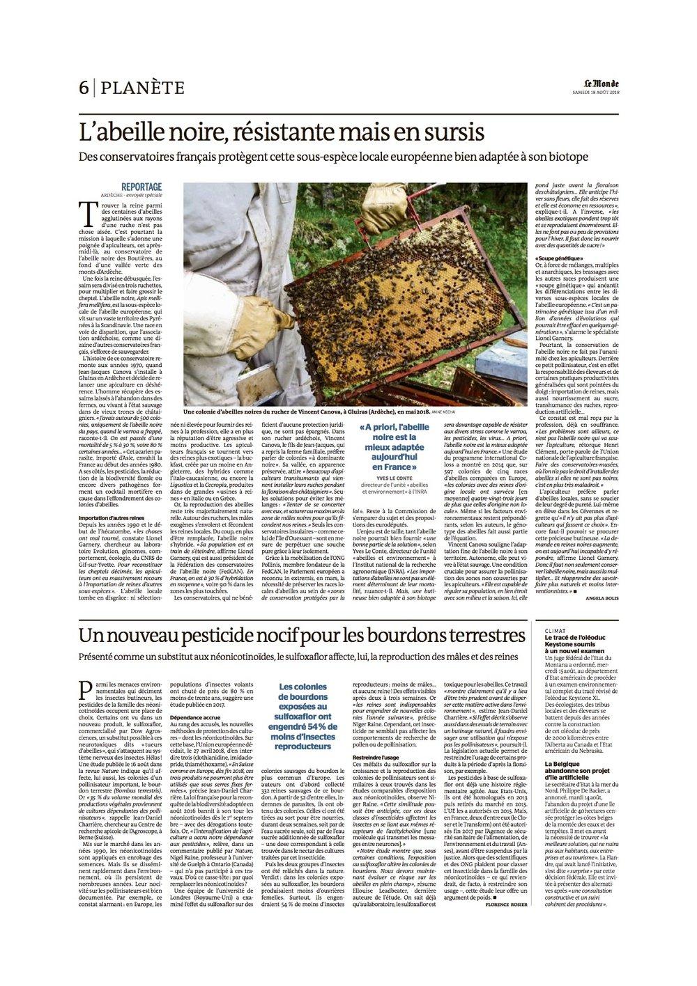 ABEILLE NOIRE - Le Monde 20180818_QUO.jpg