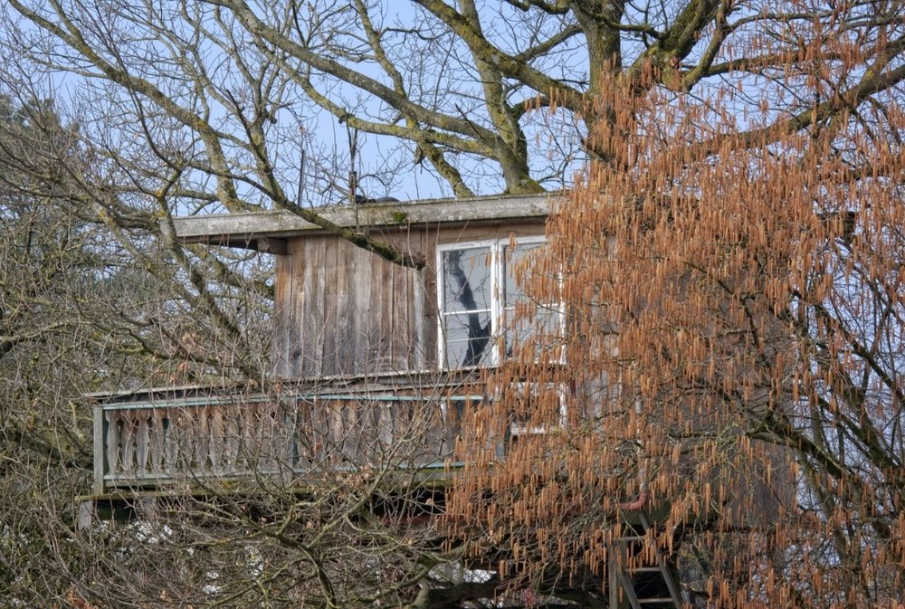 5. Treehouse -