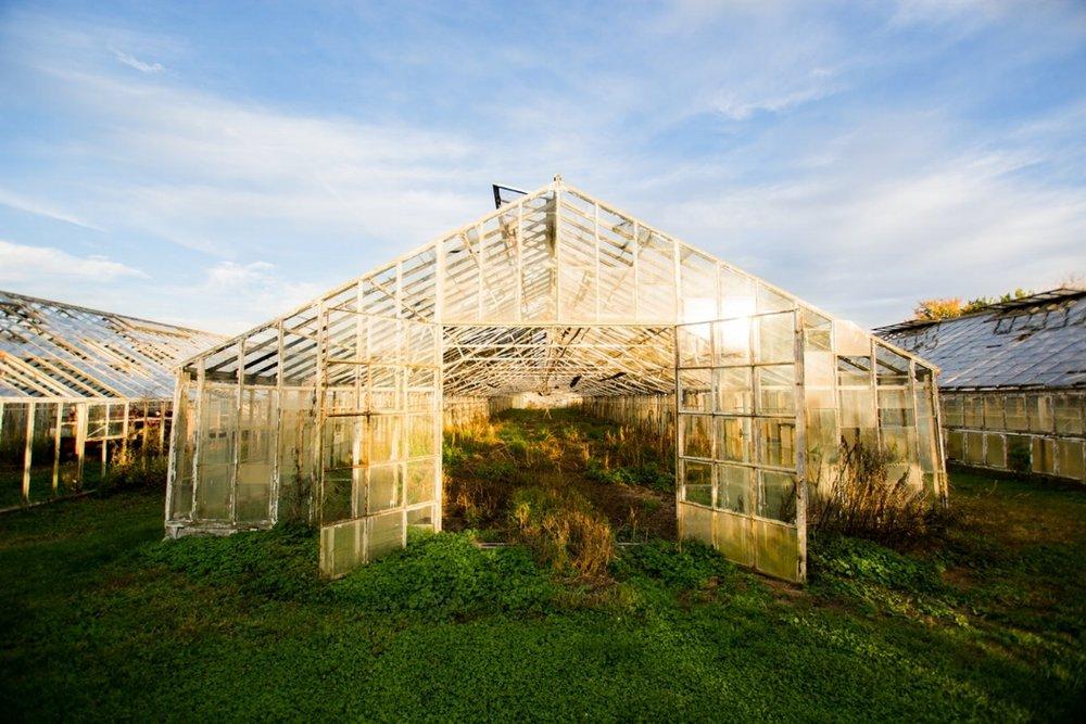 24. Plant Nursery -