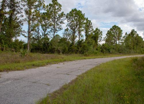 Florida Land for Sale — Compass Land USA