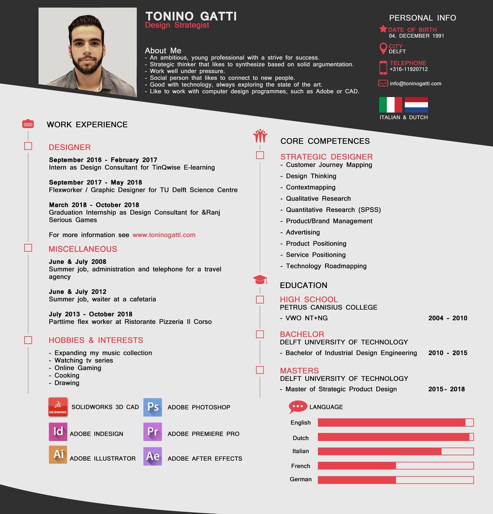 Curriculum Vitae Tonino Gatti