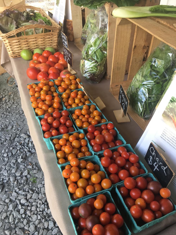 Cherry Tomatoes .jpg