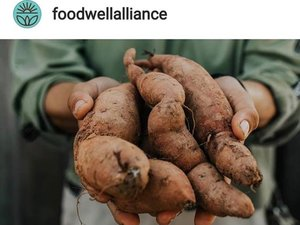 Food Well Alliance 2019 Grant Recipient  A huge thank you to Food Well Alliance for accepting our application for their Local Food Grant!!! The $5700 we asked for will go towards some very high efficiency hand tools. Our project is aimed at meeting our financial goals as well as donating 3,750 lbs. of food to our local food pantry next year.