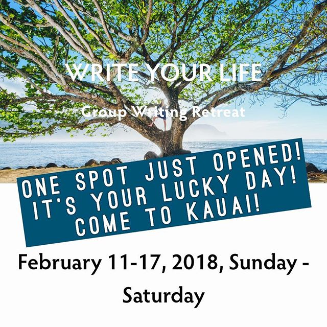 Unbelievable opportunity! We just had one space open up for anyone who wants to take it! Our retreats are always full, so this is your chance to jump in and get over here to Kauai to write and play with us!! Link in bio for registration on the website. DM for details.. If you've been looking for a sign that you need to dive into your writing or take a vacation or enjoy some you-time.. THIS IS YOUR SIGN! Do not miss out! #annrandolph #kauairetreats #kauaihawaiiretreats #kauai #hawaii #kauaihawaii #writers #writersofig #writersofinstagram #writingprompts #writingretreat #hawaiivacation #travel #travelwriting #kauaitrip #writenow #doit #hawaiitravel