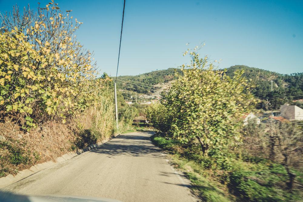 monchique portugal. monchique hills. monchique driving. monchique  roads. driving through monchique.jpg