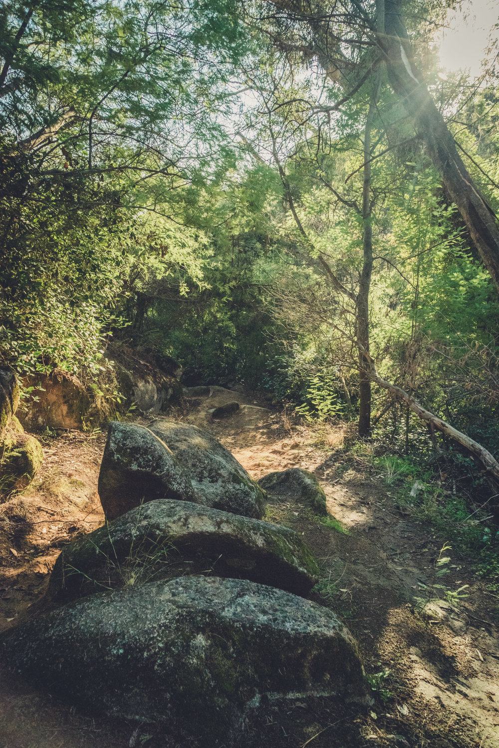 caldas de monchique portugal. walking through the forest. walking through the grounds of the spa. lovely setting. rocks on the path.jpg