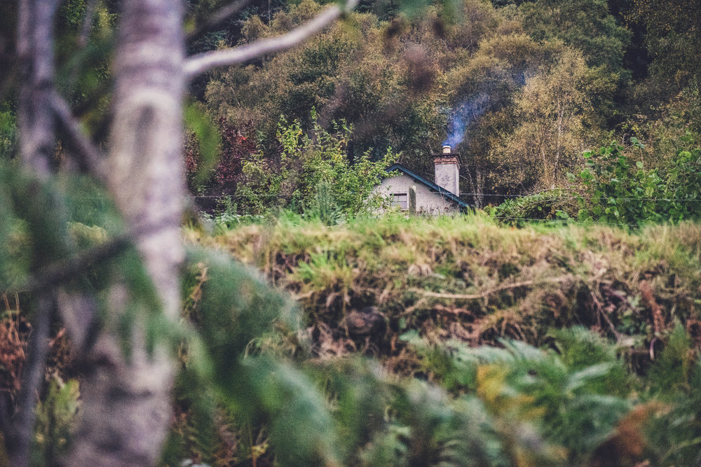 glendalough. irish history. county wicklow. round tower. hill walknig. hiking. grave yard. wildlife. tombstones. lakes. blue sky. little house and fire light.jpg