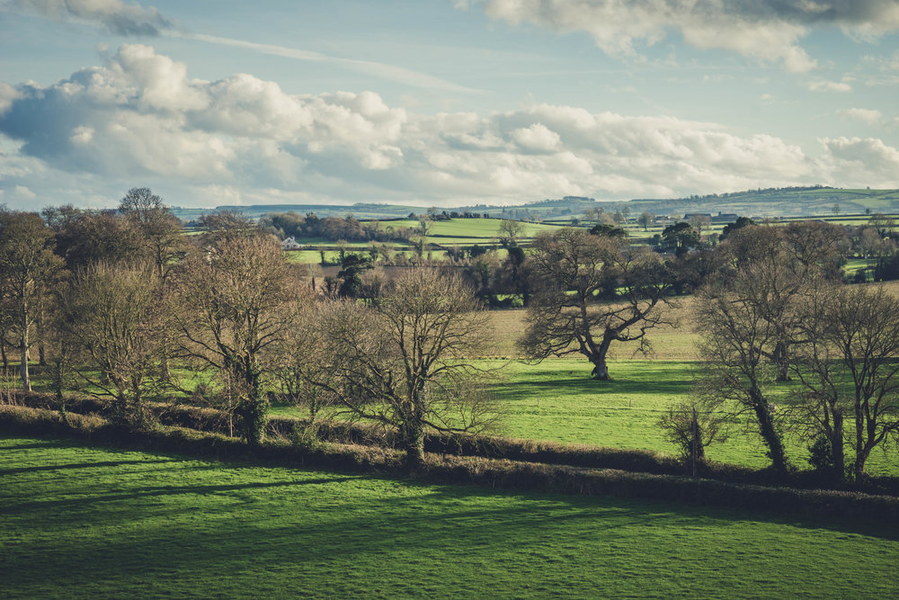 Ireland. Castle. Old castle. irish history. history. Rock of Dunamase. blue sky. rock. pathway. adventure. travel. irish counrty. green fields.jpg