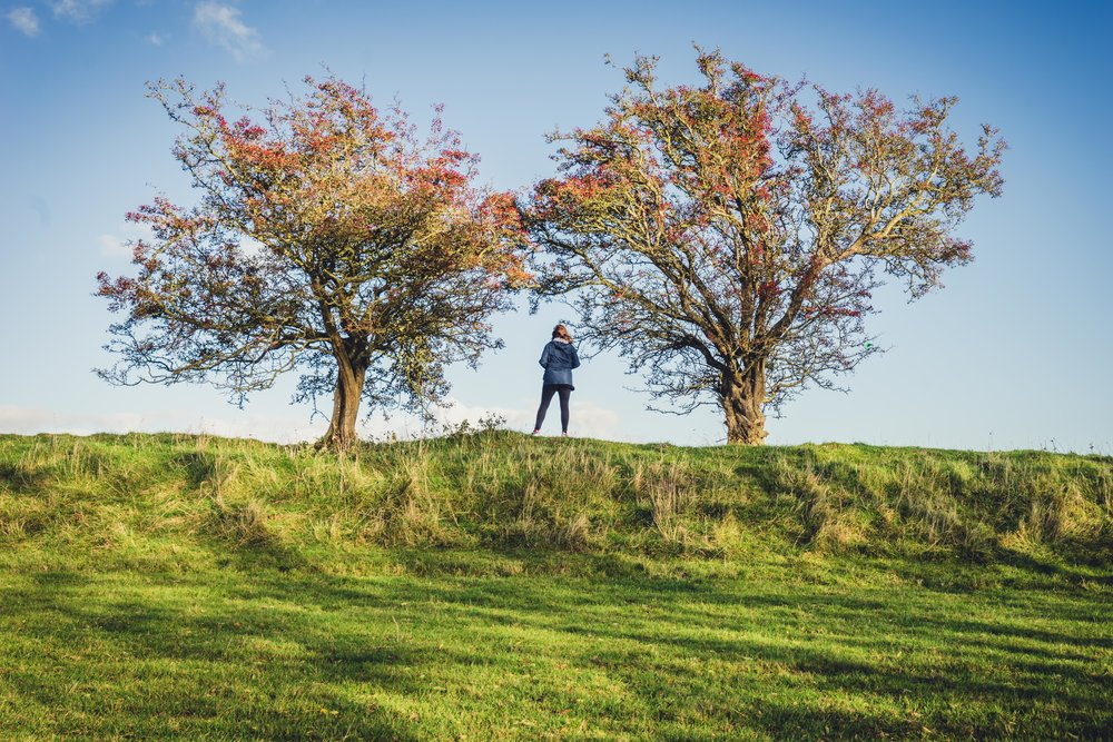 Hill of tara. ireland. history. irish. golden light. travel. blog. autumn. colour. celtic. gaelic. between the trees..jpg