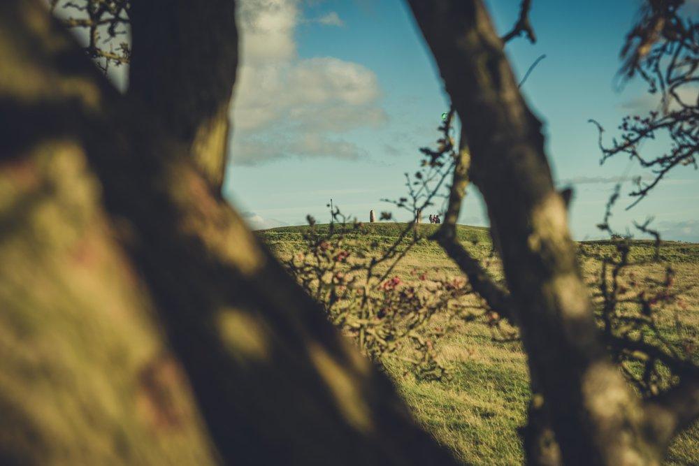 Hill of tara. ireland. history. irish. golden light. travel. blog. autumn. colour. celtic. gaelic. tara hill through the trees.jpg