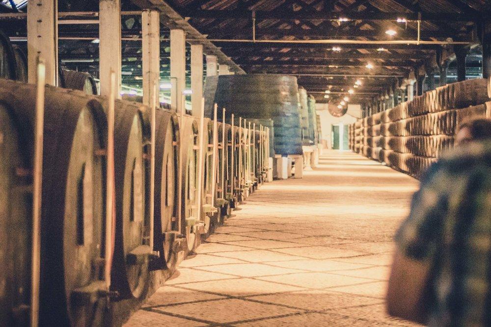 Porto. Portugal. Travel. City. poeple. wine. blog. travel blog. -74.jpg