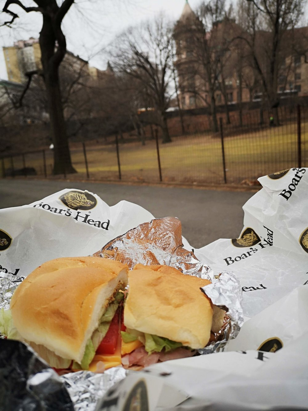 Central park lunch time.jpg