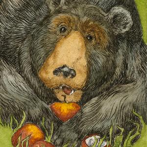 Bear Necessities.300.jpg