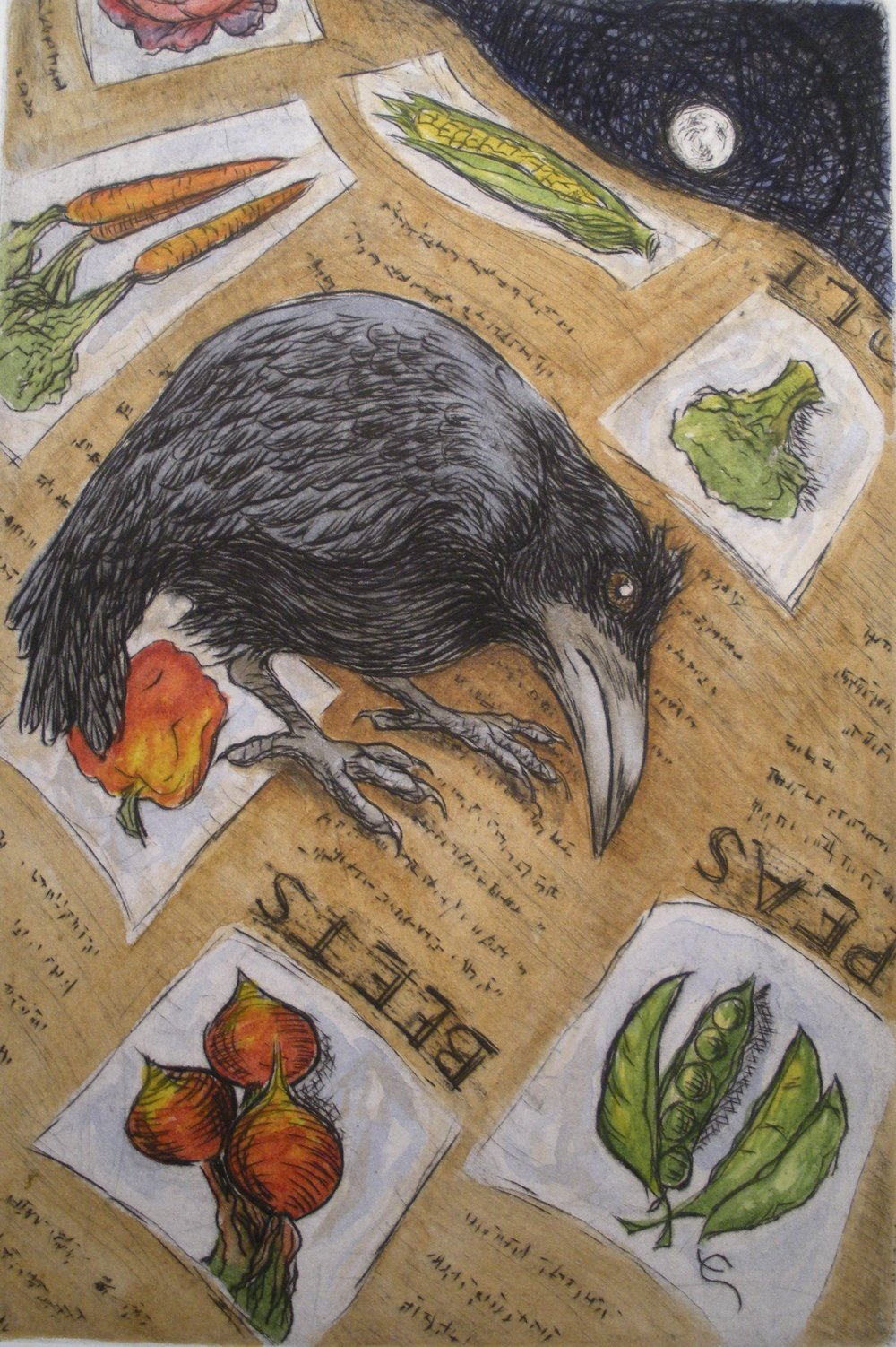 "Seed Catalog Moon - Raven siblings often stay together their first few years. Ravens nest in the woods near our house, so we often have fledglings hanging around in our yard. I like to think that they feel safe here. One day I noticed a raven playing with a Poppy. The bright orange blossoms were waving in the breeze and the little raven was quite fascinated. He would wait for the flower to sway towards him and then reach over to peck at it with his beak, sending it nodding to the ground and bobbing back up. Peck, nod, bob, peck, he amused himself (and me) with this trick for quite a while.  His sister flew by and landed on the flat arm of an Adirondack chair in my garden and proceeded to squawk. Her brother swooped in and tried to land on the back of the chair. It proved too slim of a perch and he was a fluster of flapping wings as he tried to gain balance. He lost footing on the slippery backrest, slid down the backrest of the chair, landed ingloriously on the seat, and looked over at his sister. ""Huh,"" he seemed to say, ""that was kinda fun.""  He flew back up and o'er and proceeded, with signature flap and frolic, to slide down again.  And again.  And again and again. Up, down, up, down, his sibling turning her head in time to his antics, watching his goofy game. Pure, unabashed silliness. If she's like any good sister, she was probably thinking; ""Dork."""