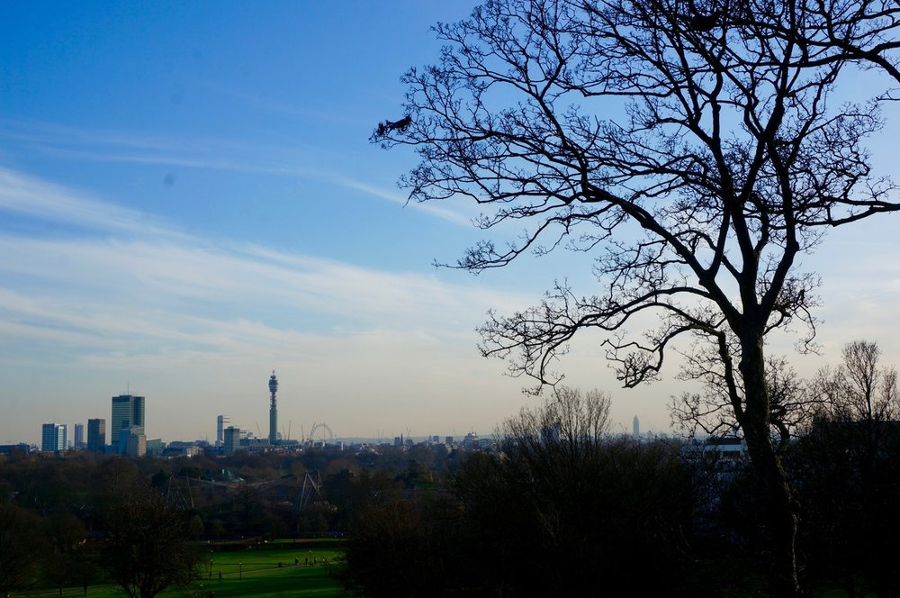 02 The Regent's Park & Primrose Hill.jpg