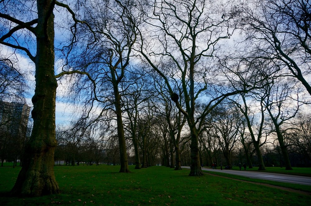 02 Hyde Park.jpg