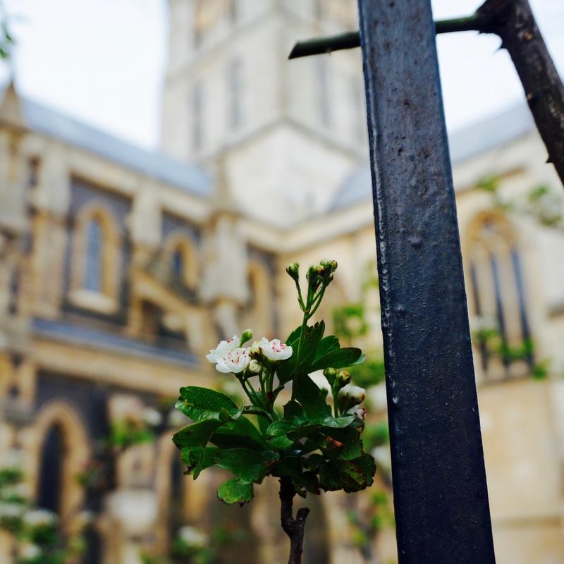 31 City Walks Shakespeare's London.jpg