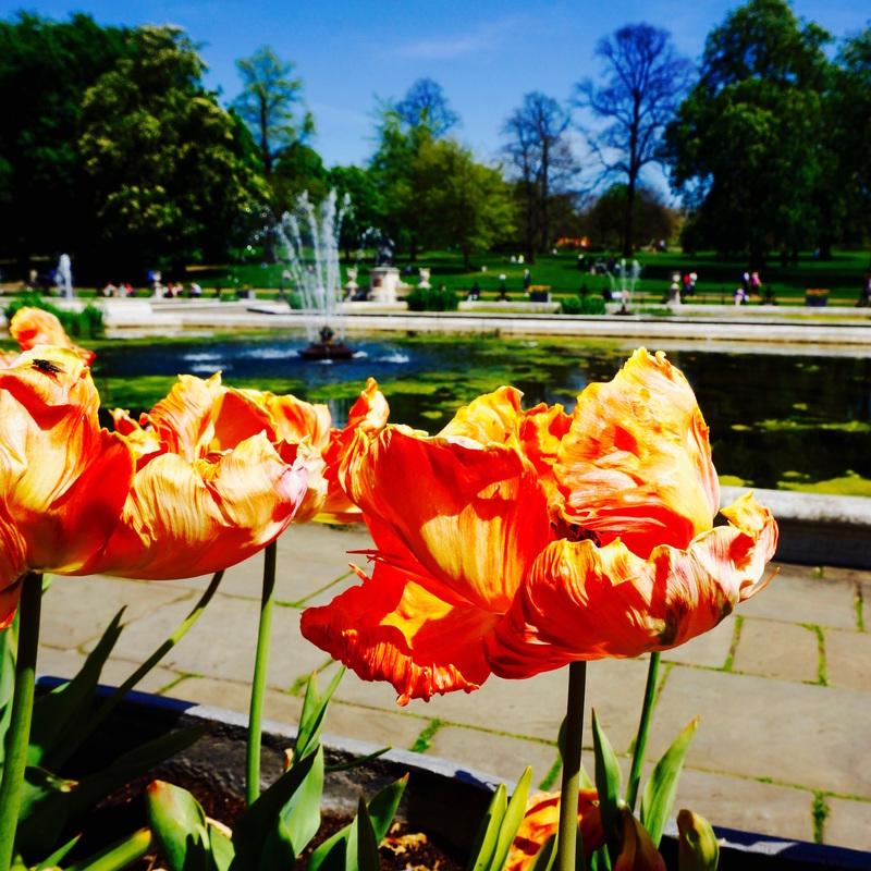 07 Kensington Gardens.jpg