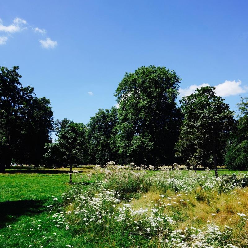 02 Kensington Gardens.jpg