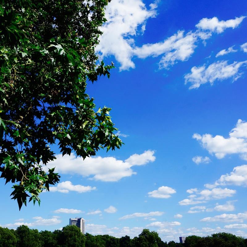 03 Hyde Park.jpg