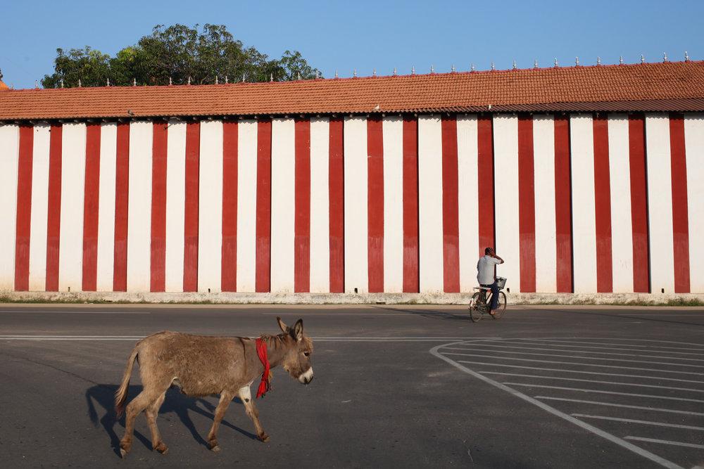 Jaffna, 2014