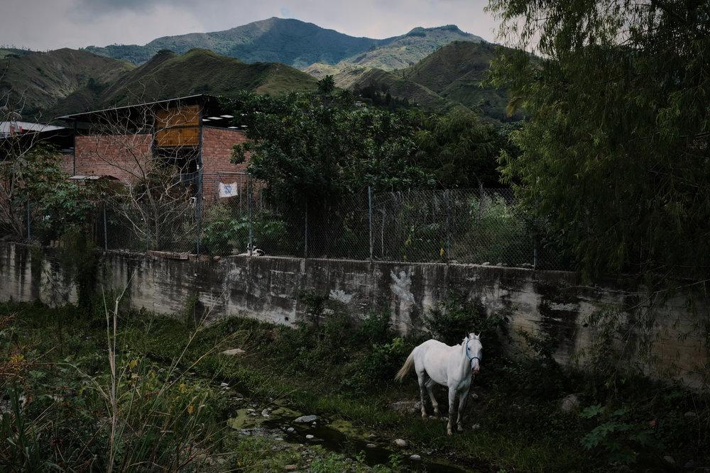Vilcabamba, Ecuador, 2018